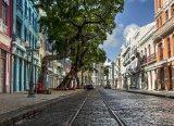 Leila Alves: 'Ode às Ruas de Recife'